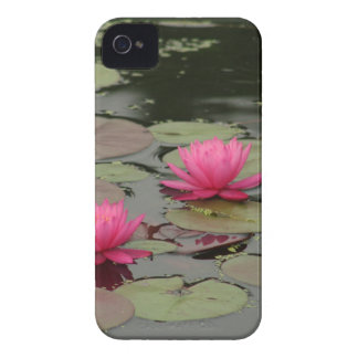 Lily Pads With Pink Flowers iPhone 4 Case-Mate Cases