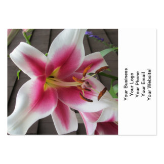 Lily Red White Plant Big Business Card Template