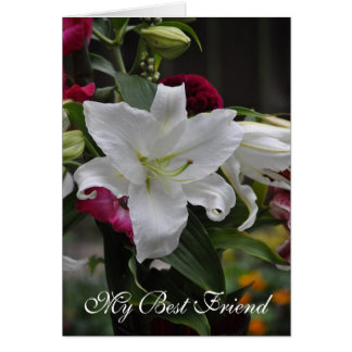 Lily White Friendship Greeting Card