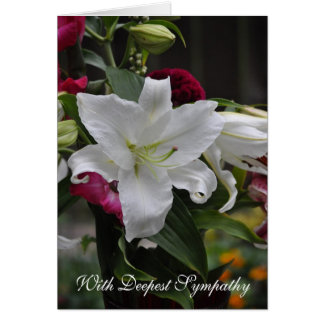 Lily White Sympathy Greeting Card
