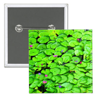 Lilypads in the River Photograph Pinback Buttons