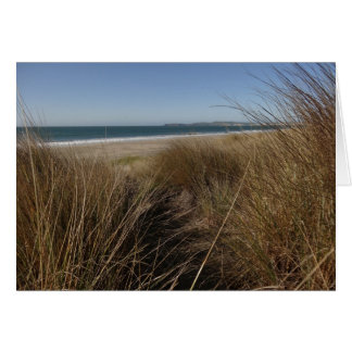 Limantour Beach at Point Reyes National Seashore Card