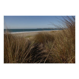 Limantour Beach at Point Reyes National Seashore Poster