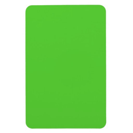 Lime Green Flexible Magnet