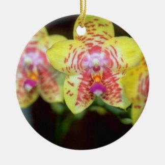 Lime Vanda flowers Ceramic Ornament