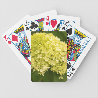 Limelight Hydrangea Bicycle Playing Cards