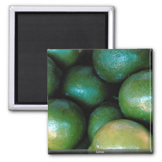 Limes Magnets