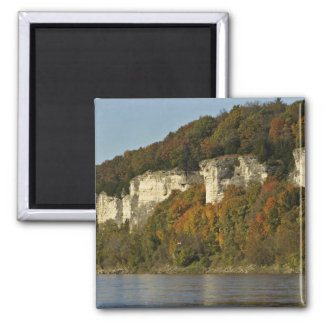 Limestone cliffs and autumn trees on the Big Muddy Square Magnet