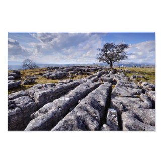 Limestone Country - Ribblesdale print Photograph