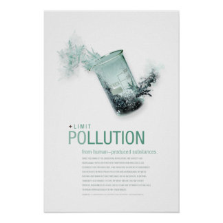 Limit Pollution: Sustainability Principle Posters