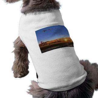 Lincoln City Kites Sleeveless Dog Shirt