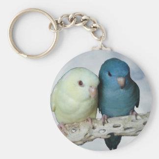 Lineolated parakeet pair key ring