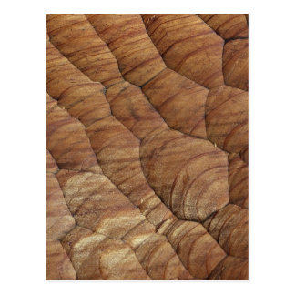 Lines carved in pale brown wood post card