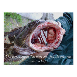 Ling cod poster at the Washington coast.