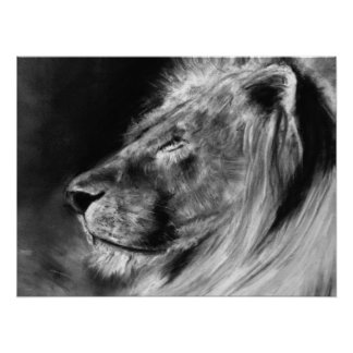 lion 24X18 poster