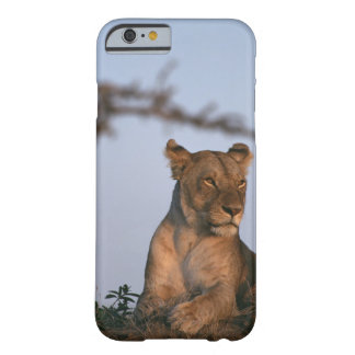 Lion 4 barely there iPhone 6 case