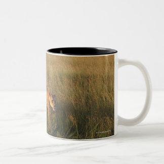 Lion 6 Two-Tone coffee mug