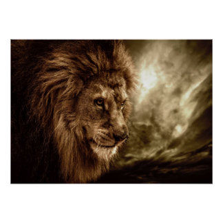 Lion against stormy sky poster