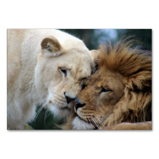 Lion and Lioness Card