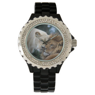 Lion and Lioness Watch