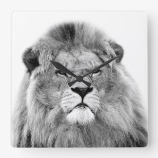 Lion animal jungle photo black and white square wall clock