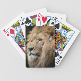 Lion Bicycle Playing Cards