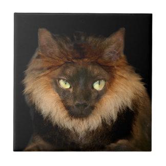 Lion cat small square tile