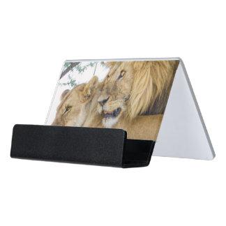 Lion Couple Business Card Holder