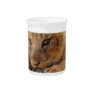 Lion cub close cute eyes lookout pitcher