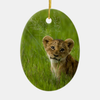 Lion Cub In The Tall Grass Ceramic Ornament