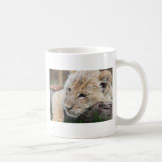 Lion Cub Coffee Mugs