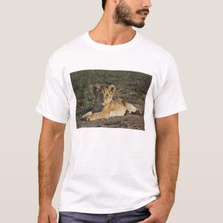 Lion cub, Panthera leo, lying in tire tracks, T-Shirt