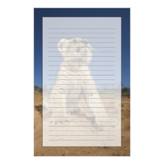 Lion Cub (Panthera Leo) sitting on sand, Namibia Stationery Design