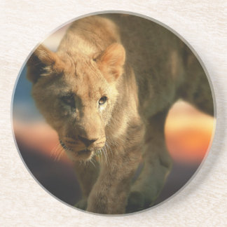 Lion Cub Sandstone Coaster