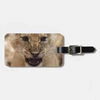 Lion cub snarling luggage tag