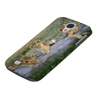 Lion cubs on log, Panthera leo, Masai Mara, 2 Galaxy S4 Covers