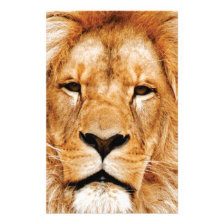 lion face yeah stationery
