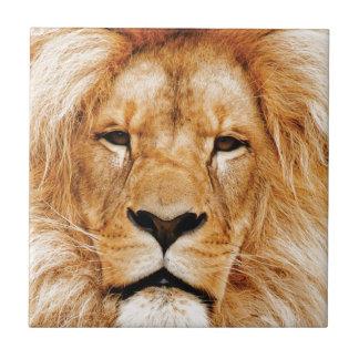 lion face yeah tile