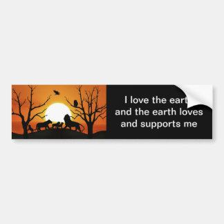 Lion family at sunset bumper stickers