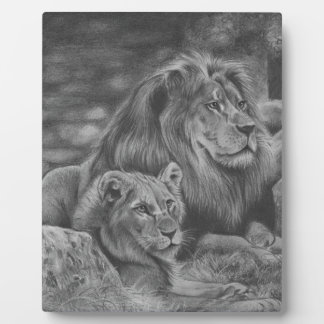 Lion family display plaques