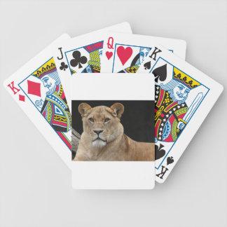 Lion Female Lying Down Poker Deck