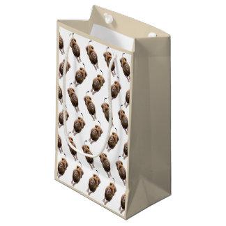 Lion Frenzy Gift Bag