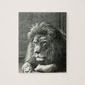 Lion Illustration Jigsaw Puzzle