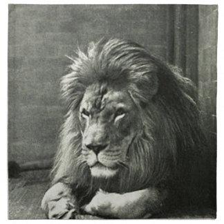 Lion Illustration Napkin