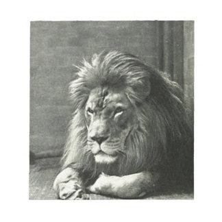 Lion Illustration Notepad