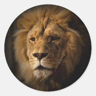 lion in darkness classic round sticker
