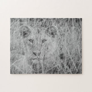 Lion in Grass Puzzle