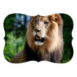 """Lion in Liberia 5"""" X 7"""" Invitation Card"""