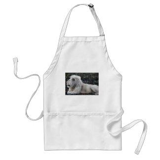 Lion in repose standard apron