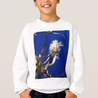 lion.jpg sweatshirt